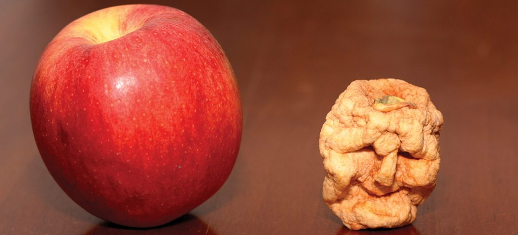 a shrunken apple head is sitting next to a ripe red apple on a wooden table.